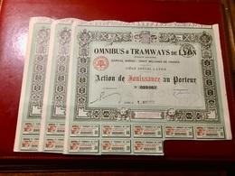 OMNIBUS  &  TRAMWAYS  De  LYON  -----------  Lot  De  3  Actions  De  Jouissances - Chemin De Fer & Tramway