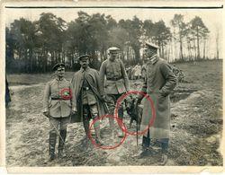 Offiziere - Gebirgskämpfer - Schäferhund Dog Chien  -Soldaten Allemande Photo-guerre 14 -18 - 1914-18