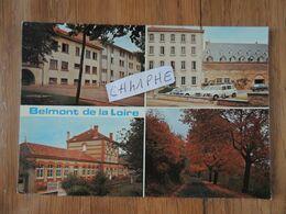 BELMONT DE LA LOIRE - 4 VUES - Belmont De La Loire