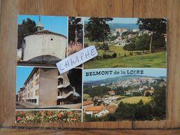 BELMONT DE LA LOIRE - 6 VUES - Belmont De La Loire