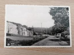 LUXEMBOURG  * Mamer - Vallée De La Mamer - Ed. Papeterie Schwartz-Jaeger, Mamer - Ansichtskarten