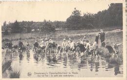 Diesterweg's Openluchtschool Te Heide. Aan Het Ven : Op Jacht Naar Waterdiertjes - Kalmthout