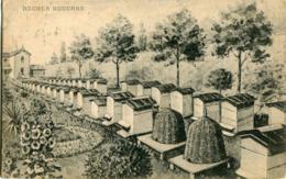 LYON MONCHAT - ETABLISSEMENT MODERNE D' APICULTURE L. JARRY  - RUCHER MODERNE - - Lyon