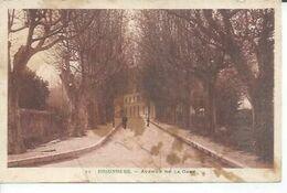 12 - BRIGNOLES - AVENUE DE LA GARE  ( Animées  ) - Brignoles