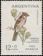 MDB-BK2-393-2 MINT ¤ ARGENTINA 1962 2w In Serie ¤ OISEAUX - BIRDS - PAJAROS - VOGELS - VÖGEL - - Passereaux