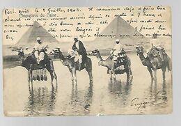Chameliers Et Pyramides - Egypte