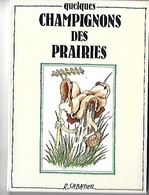 Porte Folio 8 Cartes Postales Champignons R Sabatier Glénat 1985 - Comics