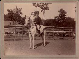 ! 2 Fotos Auf Hartpappe, Photos, Pferd, Horse, Reiter, Danzig Kriegsschule, 1895, Format 9 X 12 Cm - Pferde