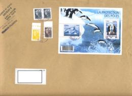 Grande  Lettre Cachet Poste  Sur Bloc Poles - Marcophilie (Lettres)
