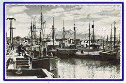 25376 CPA SAINT JEAN DE LUZ  : Le Port Et La Rhûne  !! Carte Photo !! ACHAT DIRECT !! - Saint Jean De Luz