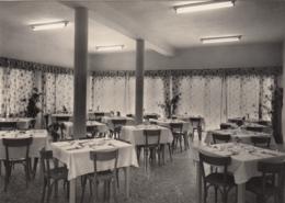 AK - Jesolo Lido  - Albergo Edelweiss - 1950 - Venezia (Venice)
