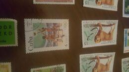 CUBA SPORT IL BASKET  1 VALORE - Stamps