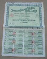 ACTION DE 250 Francs :Textiles Chimiques Du Nord Et De L'Est - Textile