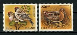 ISLANDE 1995  N° 781/782 **  Neufs MNH Superbes C 12.25 € Faune Oiseaux Fauna Birds Animaux - 1944-... Republic