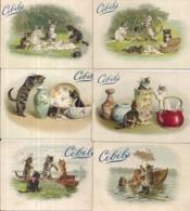 CHROMO CIBILS CIB2-8-1 CATS - Cromos