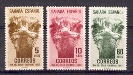 Sahara 1952 - Dia Del Sello Ed 98-00 (**) - Sahara Espagnol