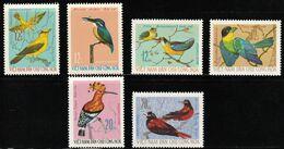 1966 North Vietnam Birds Set (** / MNH / UMM) - Passereaux