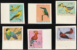 1966 North Vietnam Birds Imperforated Set (** / MNH / UMM) - Passereaux