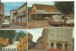 BELMONT DE LA LOIRE   ( LOIRE ) MULTI-VUES - Belmont De La Loire