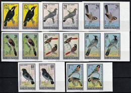 1978 Vietnam Songbirds Set Of Imperforated Pairs (** / MNH / UMM) - Passereaux