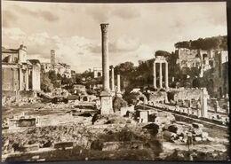 Ak Italien - Rom - Forum Romanum - Musées