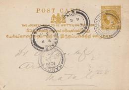 Ceylon: 1904: Post Card Kandy Nawalapitiya To Natale - Sri Lanka (Ceylan) (1948-...)