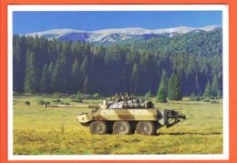 Euc136 Mont IGNAM SARAJEVO Bosnie Herzegovine CHAR AMX 10 Force Réaction Rapide Le BULLDOG Mostar 01-12-1995 Guerre - Bosnien-Herzegowina