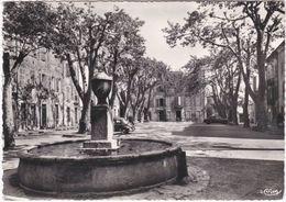 83. Gf. BRIGNOLES. Place Raynouard. 701 - Brignoles