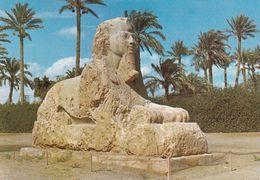 Egypt - Giza - The Sphinx Of Sakkara - Gizeh