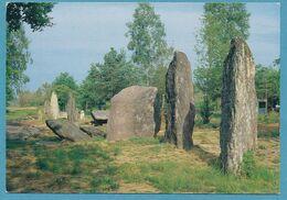 MONTENEUF - Monuments Mégalithiques - Alignements Des Pierres Droites - Frankreich