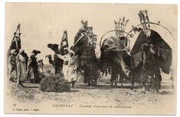 CPA     LAGHOUAT   -    COURSES DE CHAMEAUX  -   CONCOURS DE PALANQUINS - Laghouat