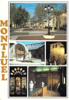 01 - Montluel - Multivues - Montluel