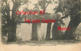 DOLMENS ☺♦♦ DOLMEN De DRAGUIGNAN - N° 1460 - Edition E. Lacour - PIERRE MEGALITHIQUE - CARTE 1900 - Dolmen & Menhire