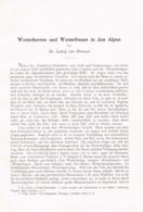 681 Von Hörmann Wetterherren Wetterfrauen Wetterheilige Artikel Von 1907 !! - Christianisme