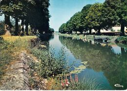 18 - Sancoins - Le Canal - Sancoins