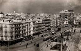 CPSM - CADIZ - AVENIDA De RAMON CARRENZA - Edition Sicilia - Cádiz