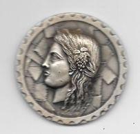 Médaille 50 Mm, Effigie Cérés Attribuée à L'occasion De FLAMEX 73 Bordeaux - France