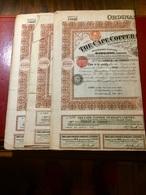 THE  CAPE  COPPER  COMPANY  LIMITED  ---------Lot  De  3  Titres  De  5  Actions  De  2£ - Mines