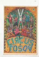 Cp, Spectacle , Cirque ,CIRCUS TOSOV By FOOTSBARN THEATRE , Vierge , Ed. Bandecchi & Pontedera - Cirque