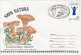 PLANTS, MUSHROOMS, SPECIAL COVER, CHILDREN STAMPS, 1995,ROMANIA - Champignons