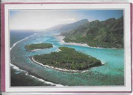 POLYNESIE-FRANÇAISE  - Lagon  Corallien - Französisch-Polynesien