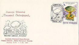 PLANTS, MUSHROOMS, SPECIAL COVER, 1990,ROMANIA - Champignons