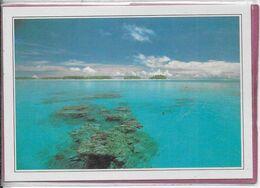POLYNESIE-FRANÇAISE  -  RANGIROA - Le Lagon - Französisch-Polynesien