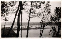 CPA Morgat- Le Port FRANCE (1026504) - Morgat