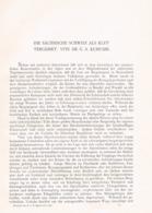 702 Kuhfahl Sächsische Schweiz Klettergebiet Artikel Von1908 !! - Winter Sports
