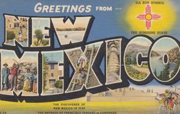 "Large Letter Greetings, ""NEW MEXICO"", 1930-40s; Zia Sun Symbol, Sunshine State - Etats-Unis"