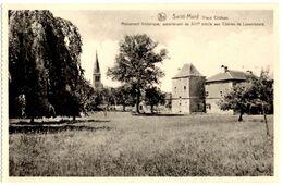 BELGIQUE VIRTON - SAINT-MARD -  Vieux Chateau - Editeur: Jean-Jacques, Saint Mard - Virton
