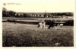 BELGIQUE VIRTON - SAINT-MARD -  Panorama - Editeur: Jean-Jacques, Saint Mard - Virton
