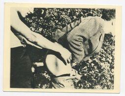 DC537 Photographie Vintage Homme Gay Interest érotisme Nude Risque Nu Man Homosexualité - Erotiche (...-1960)