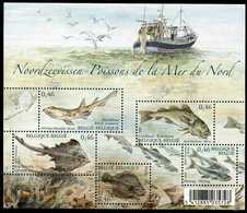 Blok 130** Noordzeevissen Met Zegels 3533/37** Bloc 130 Poissons De La Mer Du Nord MNH - BF 130** - Bloques 1962-....